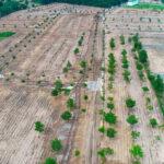 Năm 2021, siết chặt tình trạng phân lô bán nền tràn lan